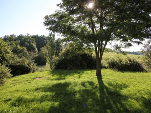 chambre-hote-nature-les3vignobles-jardin-04